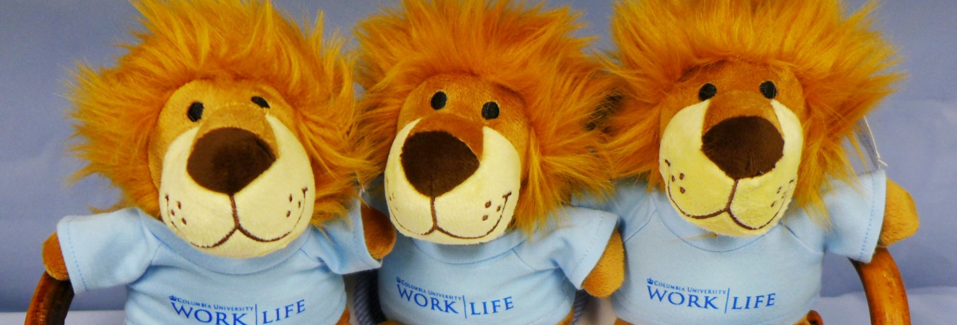 Work/Life Lions